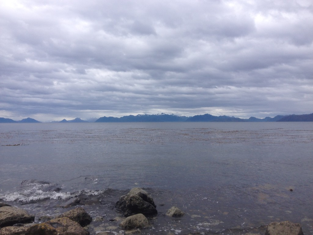 Our view at lunch - looking out at Tierra del Fuego