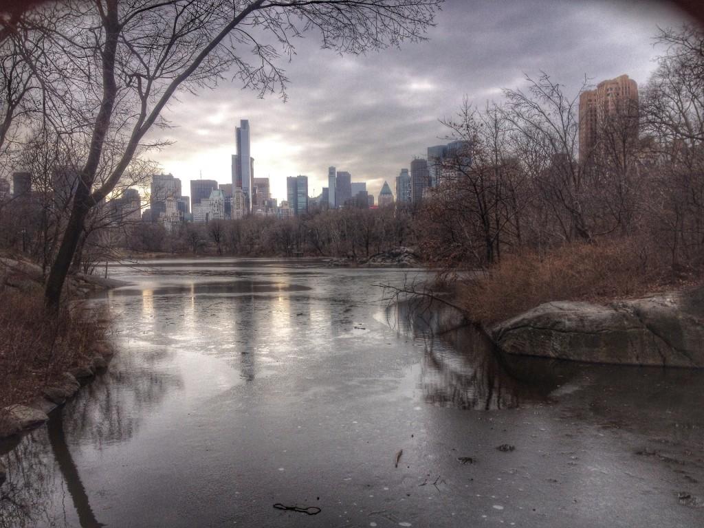 Visit to Central Park