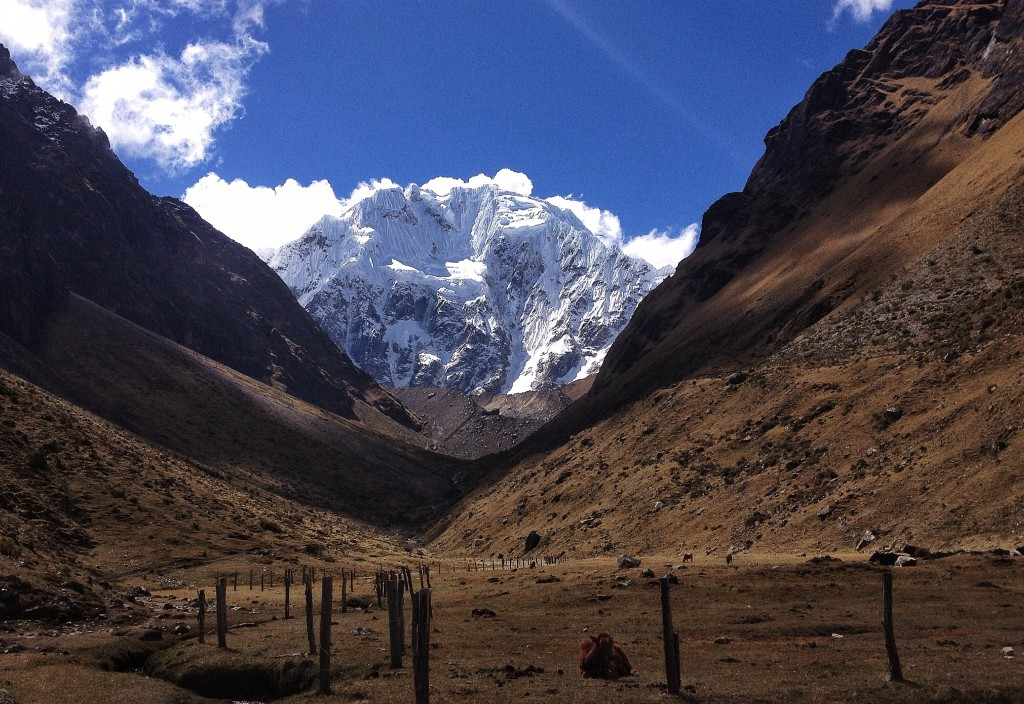 Next we went trekking in the Salkantay region.  Here is the start of our trek looking up towards Salkantay - which remains unclimbed.  Did I mention I love these mountains?!