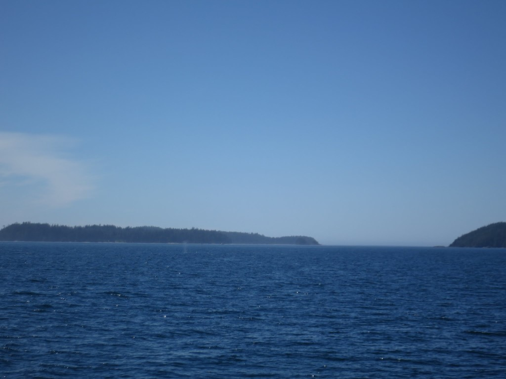 Whale in the distance (all you can see is the water spout)