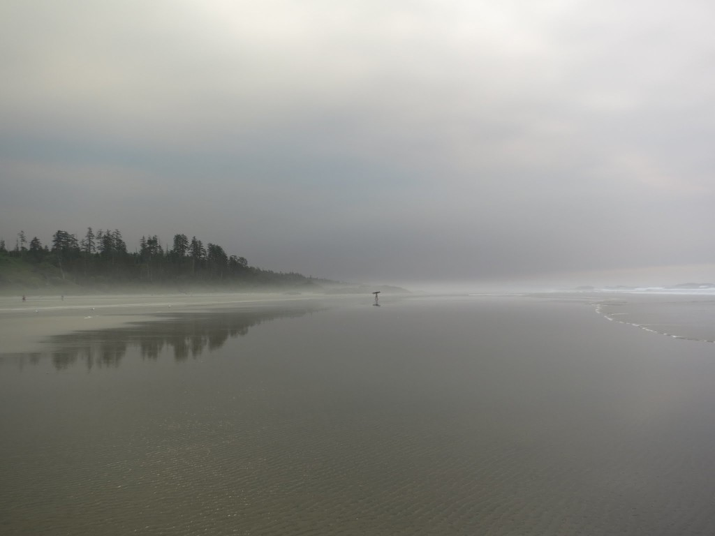 After leaving Ucluelet I camped at the National Park site -- this was our private beach. No, it didn't suck.